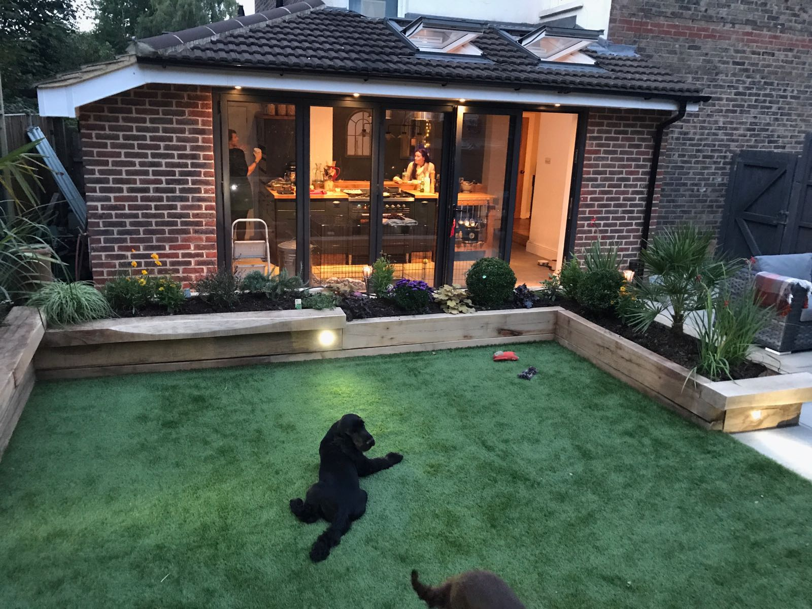 dogs loving their new garden with artificial grass